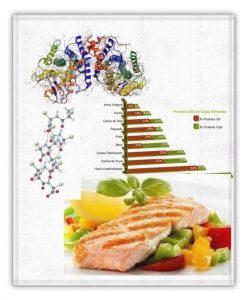 proteinas del organismo