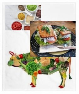 Proteinas de origen vegetal