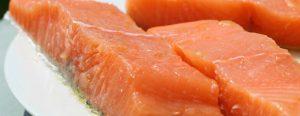 salmon proteina