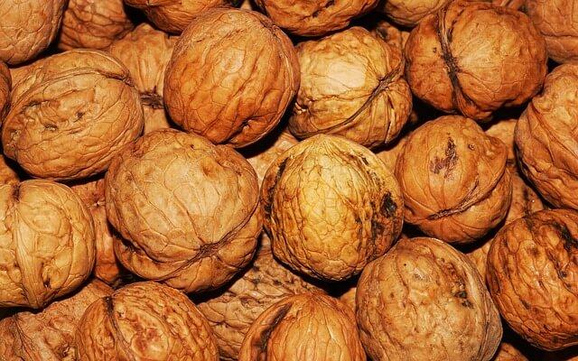 Las nueces contienen Hierro 6.1 mg por 100 gramos de alimento