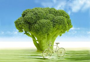 verduras de hoja verde brocoli