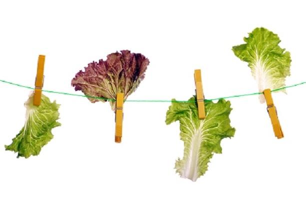 jugos de verduras para bajar de peso rapidamente