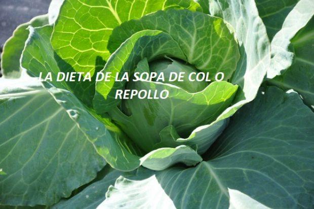 LA DIETA DE SOPA DE COL O REPOLLO