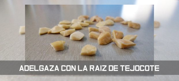 Raiz-de-tejocote 4945 - Dietaproteica10.com