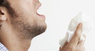 Remedios caseros para la alergia al polvo