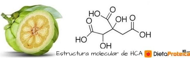 Estructura molecular de HCA