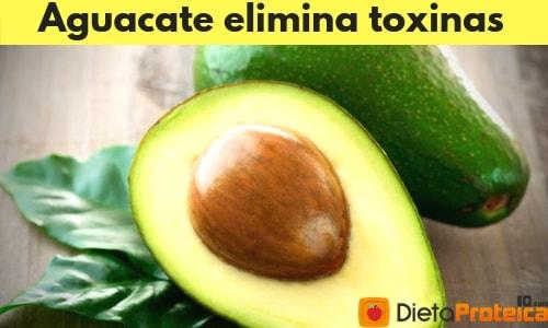 Aguacate elimina toxinas