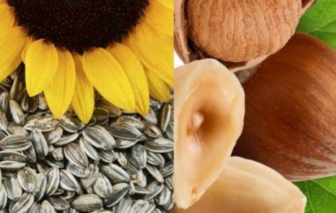 Lista de Alimentos Ricos en Magnesio