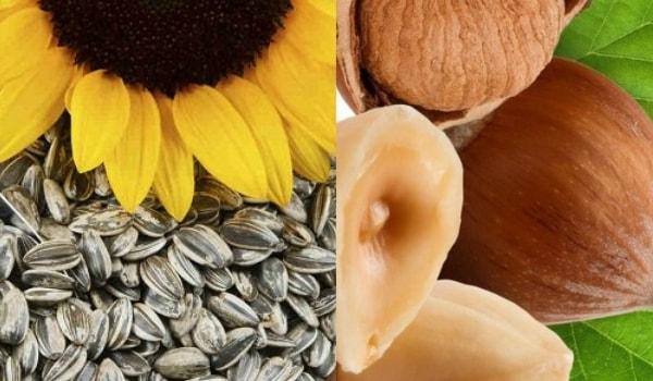 Mejores alimentos ricos en magnesio