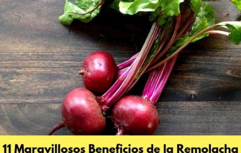 11 Increíbles Beneficios de la Remolacha